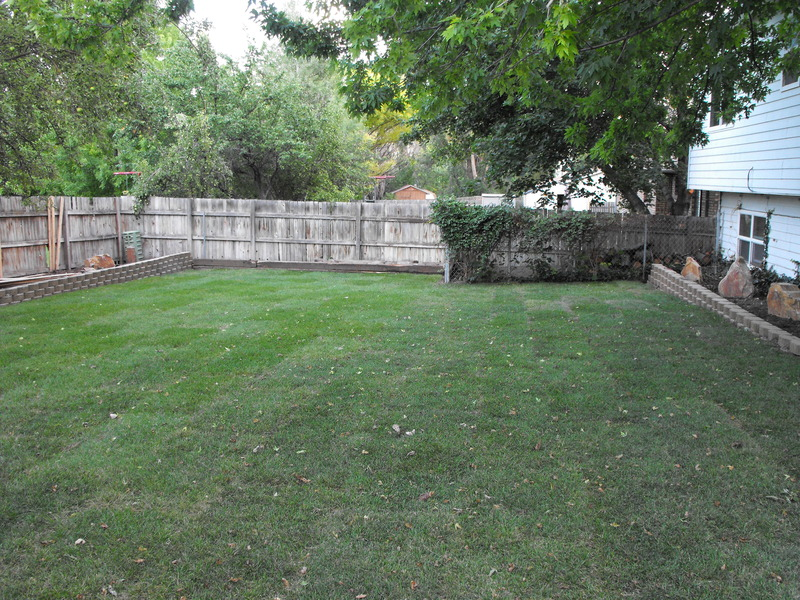 Landscaping Leveling Yard : Backyard landscaping a transformation bruteforce